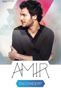 affiche Amir Haddad