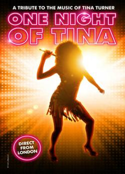 affiche «ONE NIGHT OF TINA - A Tribute to the music of Tina Turner»