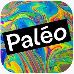 affiche 45ème PALEO Festival de Nyon - reporté en 2021