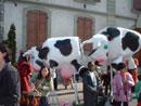 Char Vaches