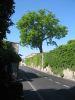 L'Ancienne route de Genève à Thonon (actuel ch. de Ruth)